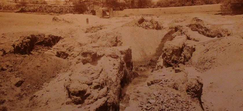 Tirocinio Museo Egizio FrameBlog