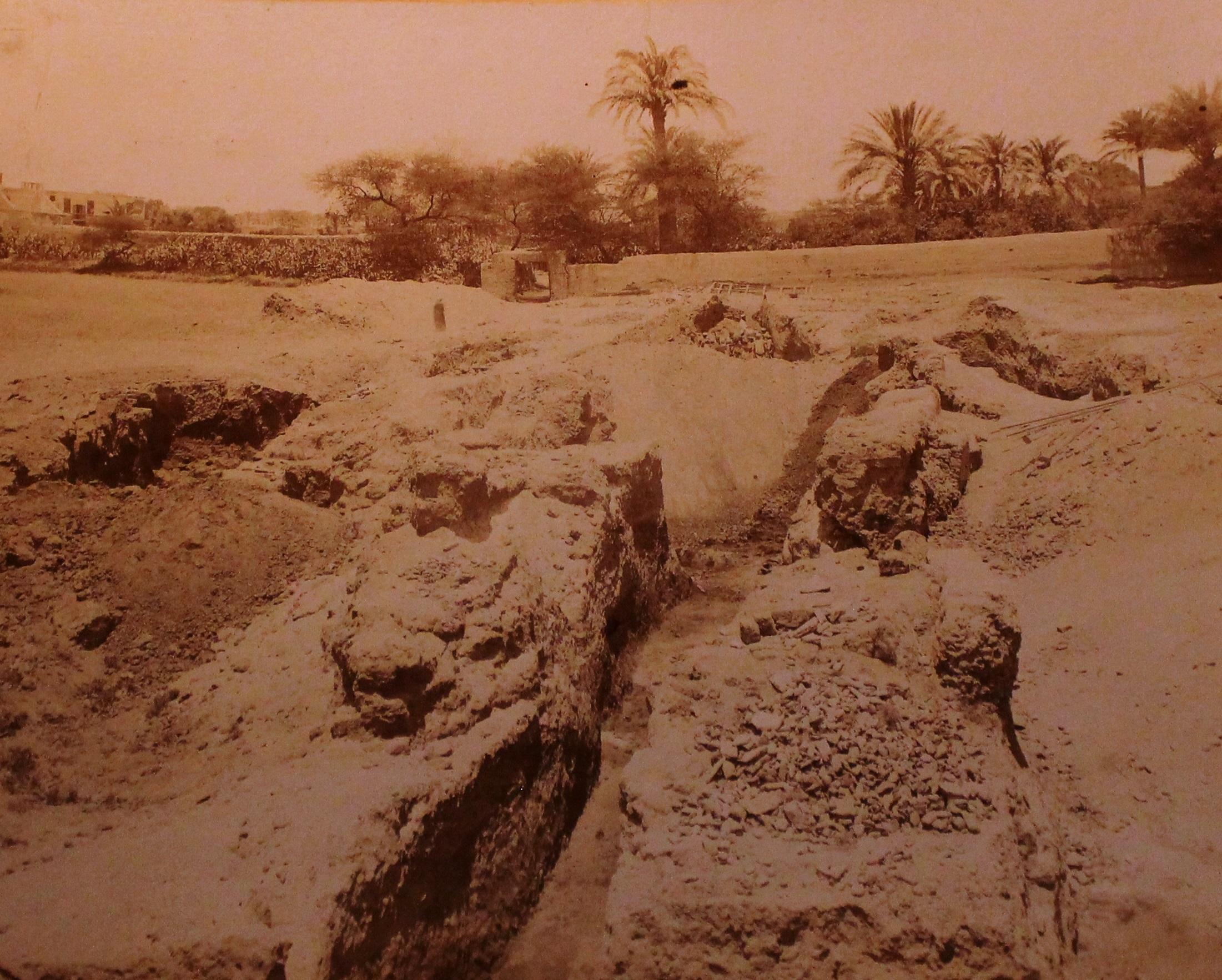 Digitalizzare un'esperienza: il mio tirocinio al Museo Egizio